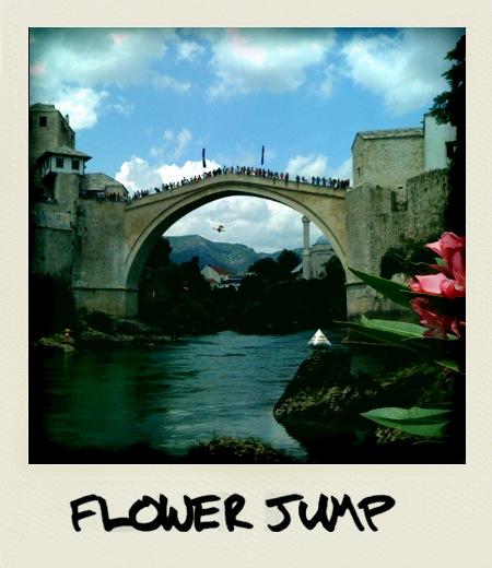 Majhna pikca pod mostom je skakalec, ampak ti seveda gledaš le roza cvet v blišnjem planu (fotografija narejena in obdelana z iPhone telefonom)